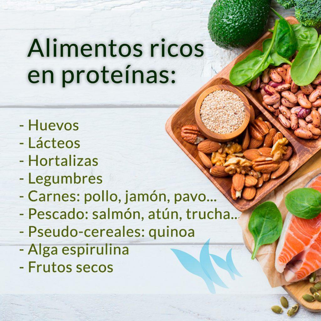 Beneficios de las proteínas en las dietas